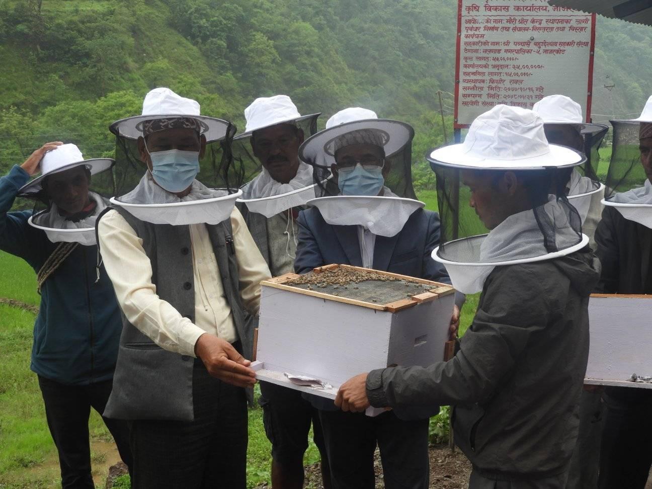नलगाडका मौरीपालक किसानलाई मौरी वितरण ( फोटो फिचर )