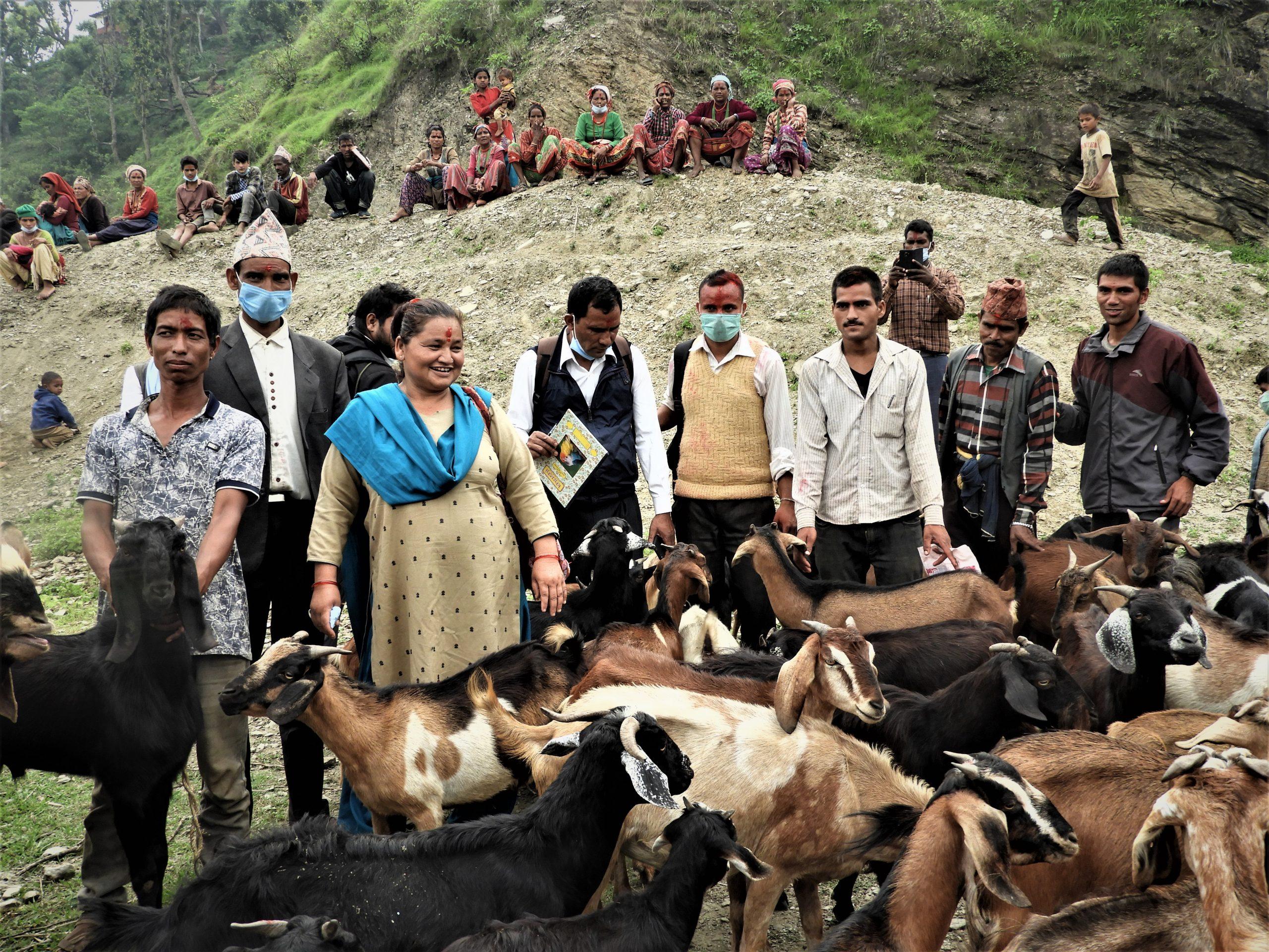 गरिव तथा विपन्न दलित समुदायलाई जीविकोपार्जनको लागि बाख्रा वितरण गर्दै सांसद खत्री ( फोटो फिचर)