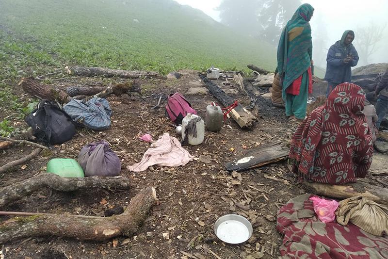 जुम्लामा २५ भेडाका पाठा जलेर नष्ट